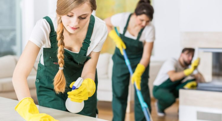 Carpet Cleaning Dublin: Services That Keep Your Home Clean