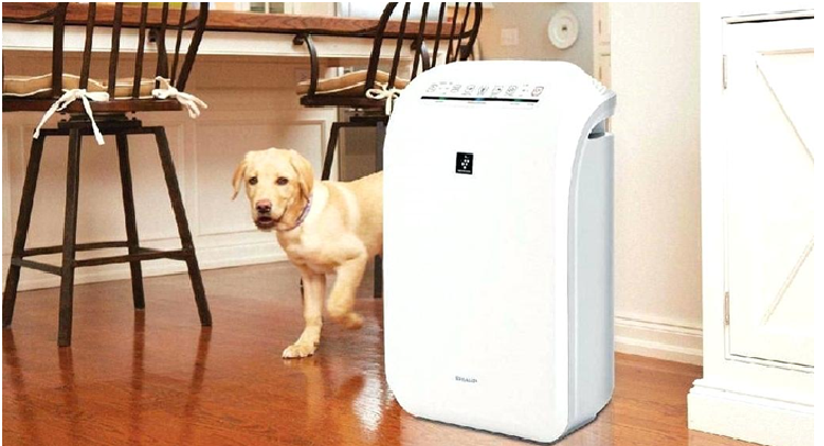 Role of air purifiers for your well-being