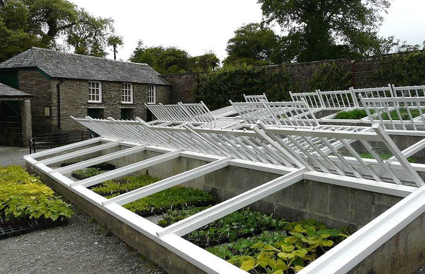 Growing Crops in Cold Frames